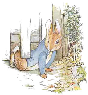 Peter Rabbit by Beatrix Potter